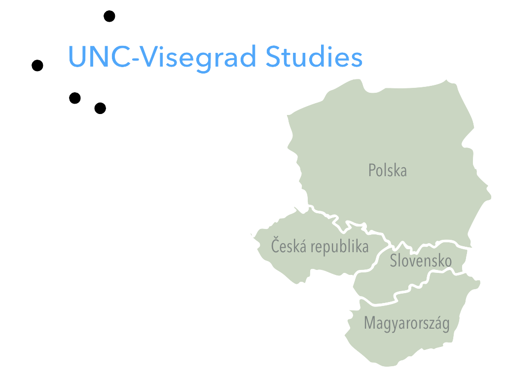 VisegradStudies3